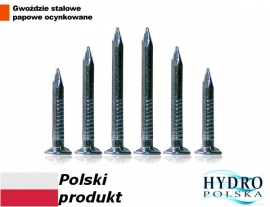 GWOŹDZIE PAPOWE 35mm  1kg ocynk polskie