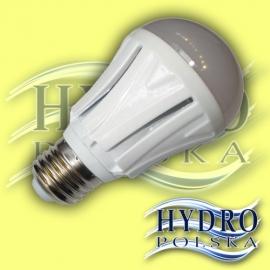 Żarówka  10W  E27 27 LED SMD 5630 Samsung Chip GLOBE Biała Ciepła
