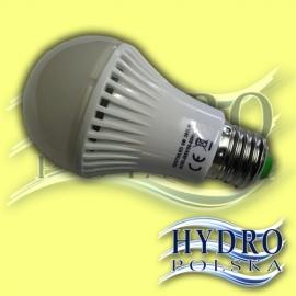 Żarówka LED 6W E27